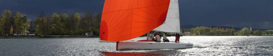 insign Cup - e-mOcean pur - segeln in der Brise